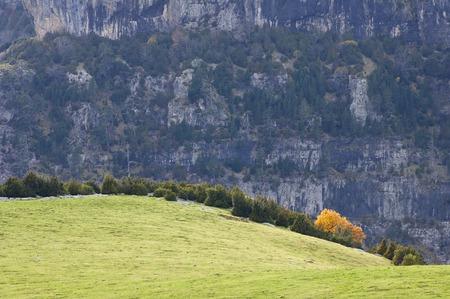 anisclo: Autumn in the Ordesa National Park, Anisclo Canyon, Pyrenees, Huesca, Aragon, Spain.