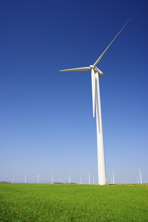desarrollo sostenible: Los molinos de viento para la producción de energía eléctrica provincia Aragón España Zaragoza