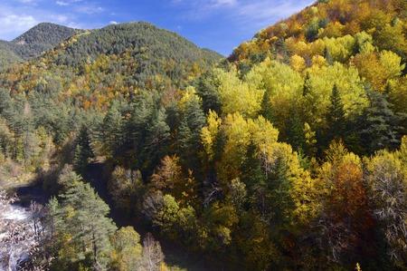 Autumn in Vio Valley, Pyrenees, Huesca, Aragon, Spain