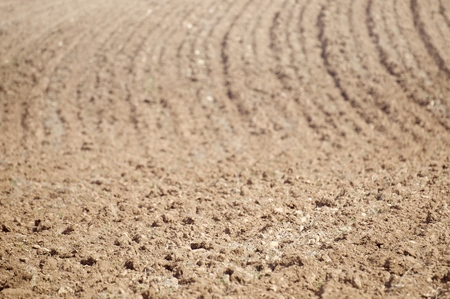 farm field: Texture of a plowed field, Zaragoza Province, Aragon, Spain. Stock Photo
