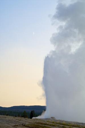 faithful: Old Faithful geyser in Yellowstone National Park, Usa.