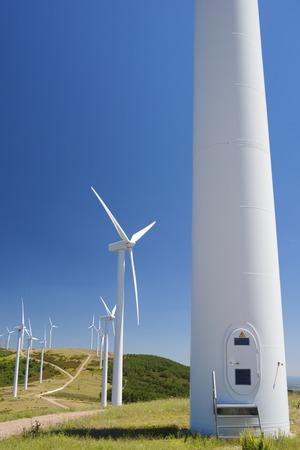 windturbine: Windmills for electric power production, Burgos Province, Castilla Leon, Spain.