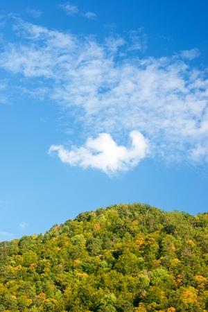 Autumn in Vio Valley, Pyrenees, Huesca, Aragon, Spain. Banco de Imagens