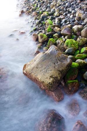 shingle beach: view of a shingle beach in Madeira, Portugal