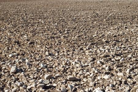 cropland: Texture of a plowed field, Zaragoza Province, Aragon, Spain. Stock Photo