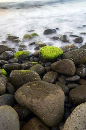 shingle beach: View of a shingle beach in Madeira, Portugal.