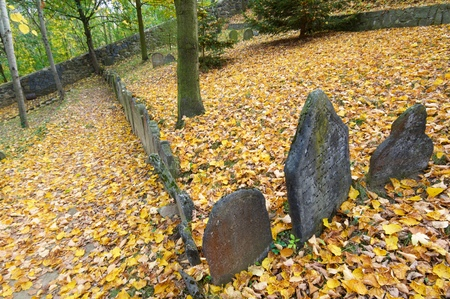 judaical: Jewish cemetery in  Trebic, World Cultural
