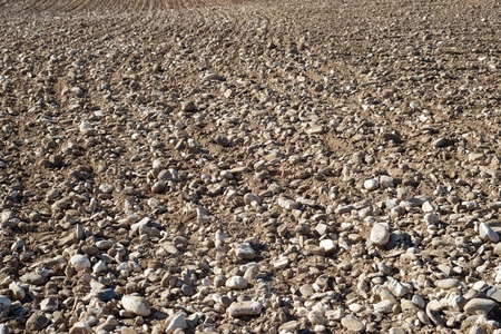 ploughing field: Texture of a plowed field, Zaragoza Province, Aragon, Spain. Stock Photo