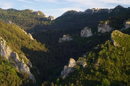 zaragoza: Forested Santo Domingo Mountains, Zaragoza Province, Aragon, Spain.