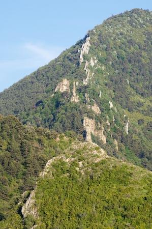 domingo: Forested Santo Domingo Mountains, Zaragoza Province, Aragon, Spain.