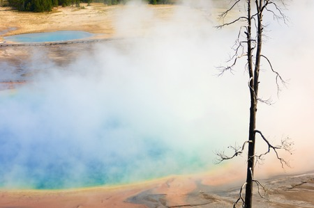 prismatic: Grand Prismatic Spring in Yellowstone National Park, Usa