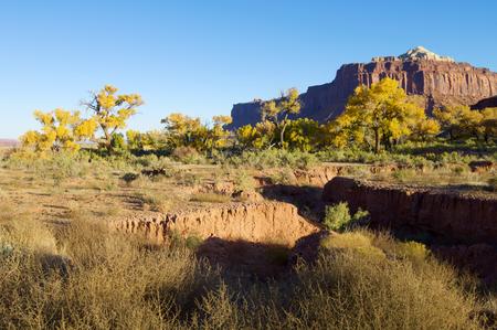 desert ecosystem: Hills in Indian Creek, near Canyonlands, Utah, USA.