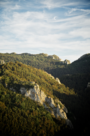 forested: Forested Santo Domingo Mountains, Zaragoza Province, Aragon, Spain.