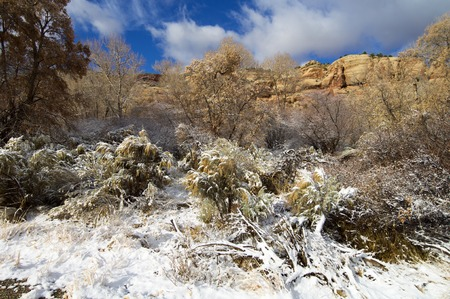 indian creek: Indian Creek winter view, near Canyonlands in Utah, Usa.