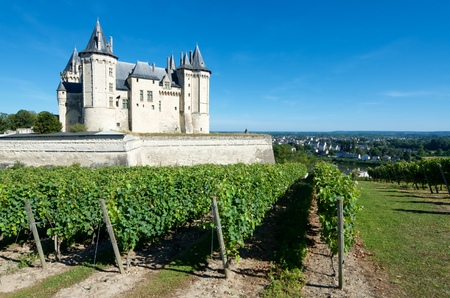 the loire: Saumur castle and Loire River, Loire Valley, France. Saumur Castle was built in the tenth century and rebuilt in the late twelfth century. It is now owned by the city and is one of the most famous castles of the Loire Valley.