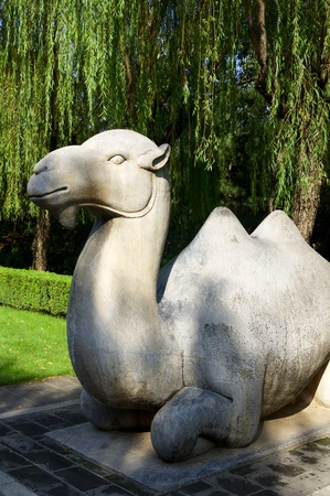 Statue of a Standing Camel in The General Sacred Way of the Ming Tombs. It was built between 1435 and 1540. Shisanling, Beijing, China