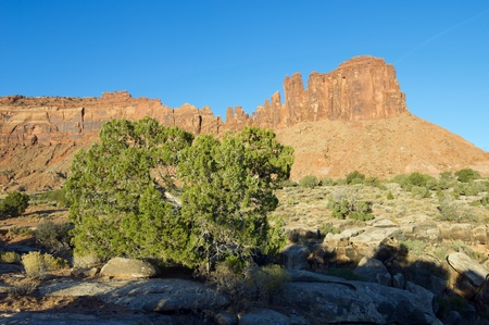 indian creek: rocky cliff in the area known as Indian Creek, near Canyonlands, Moab, Utah, Usa