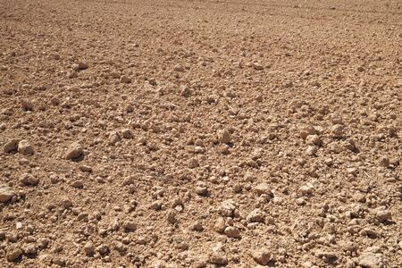 Texture of a plowed field, Zaragoza Province, Aragon, Spain. Фото со стока