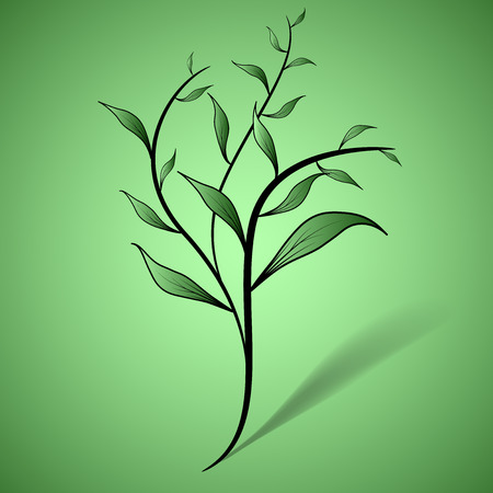 growing plant: Young growing plant on green background