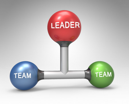 common target: Teamwork with management. Conception of leadership