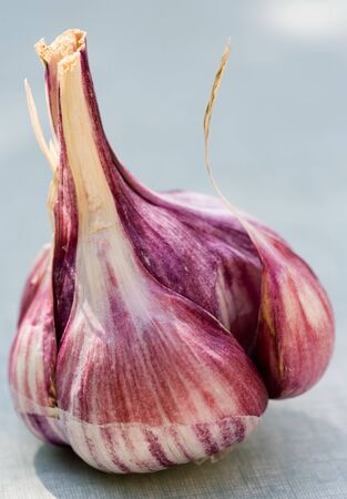 fresh garlic ready to be used in culinary on kitchen table