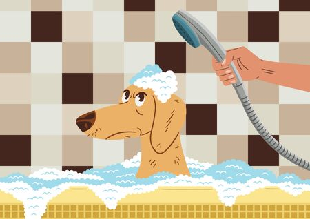 Vector illustration of a dog inside the bathtub, with an angry face, because his owner is bathing him. Cartoon style.