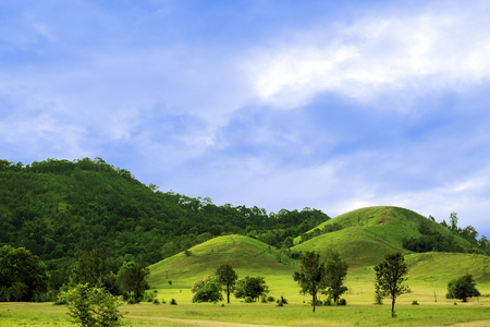 green hills: Green hills in summer