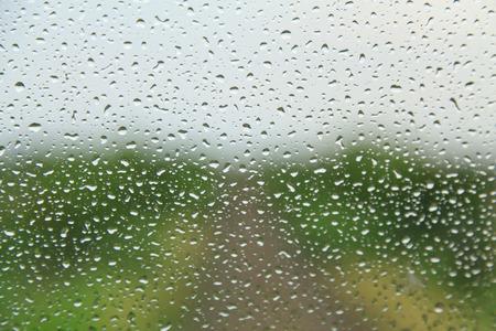 condensation: Condensation on glass.