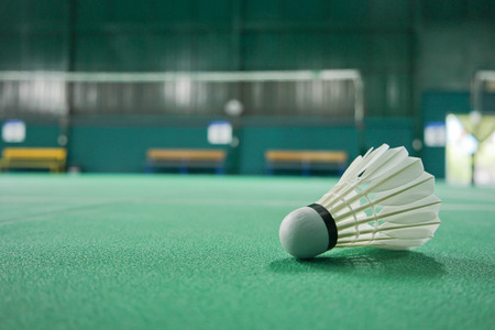 racket sport: Ball Badminton is in the playing area