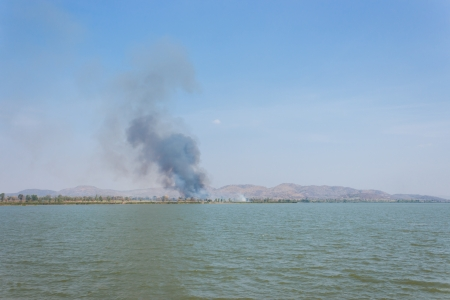 Smoke from a large fire in a forest