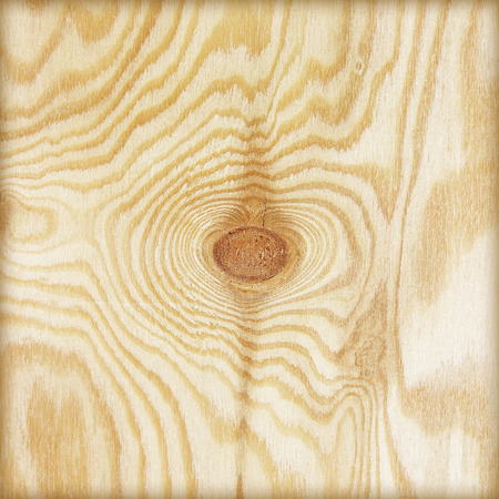 parkett: plywood texture with natural wood pattern; Wood background or texture