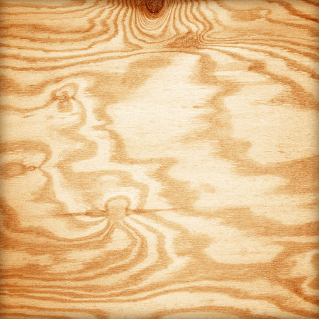 plywood texture with natural wood pattern photo