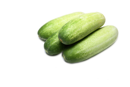 Cucumber on a white background  photo