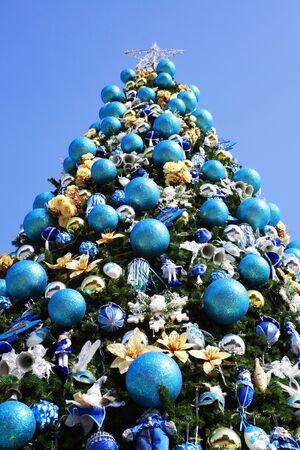 christmas blue tree  Stock Photo