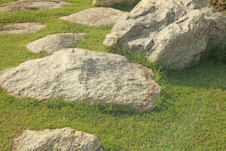 green field and stone in the garden