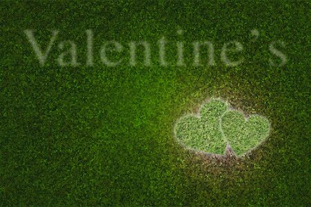 the green heart on the green background photo