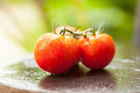 Close-up of fresh, ripe three cherry tomatoes on wet wood
