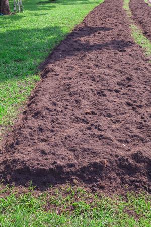 Prepare soil for planting Stock Photo