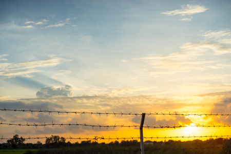 autonomia: Behind the barbed wire is freedom