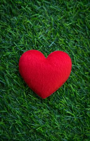 Red heart on artificial green grass.
