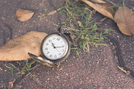 Pocket watch on floor with dried leaf.