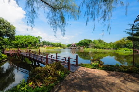 ponte giapponese: Incantevole giardino verde
