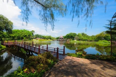 garden pond: Lovely green garden