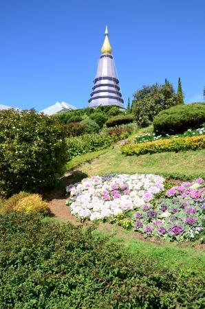 pagoda photo