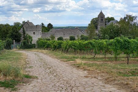 what if: Medieval village Dalsheim Floersheim-located in Rhineland-Palatinate in Germany The road looks as if it what built by the Romans and it what since in operation.