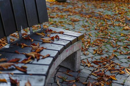 Autumn with dry autumn leaves around a park bench as Wallpaper