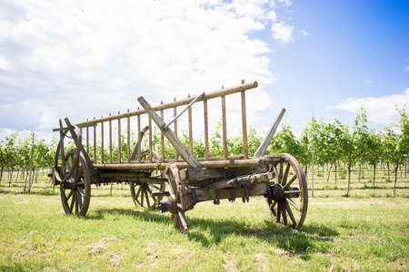 discarded: Discarded horse cart with broken wheels in front of a vineyard Stock Photo