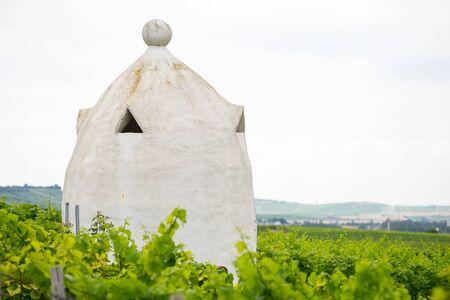 winegrowing: Vineyard shelter in the style of an Italian Trullo in Rheinhessen, Germany, Rhine-Hesse.