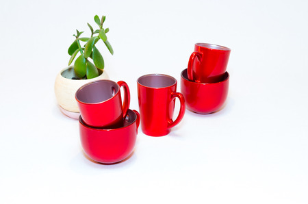 crassula ovata: red empty cups of coffee and crassula ovata or jade plant in flowerpot on white background Stock Photo