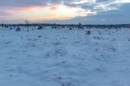turba: Winter Peat or Bog Landscape at Sunset